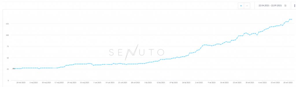 Sukces SEO oparty o analizę widoczności w Senuto